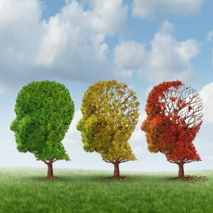 Home Care Services in Marietta GA: Senior's Brain Changes